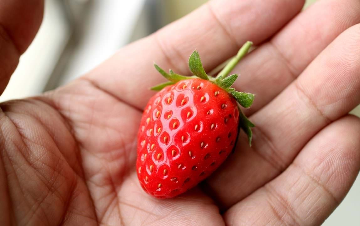 strawberry-1079056_1280